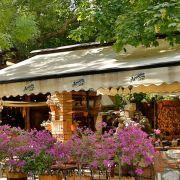 Стария чинар - Македония