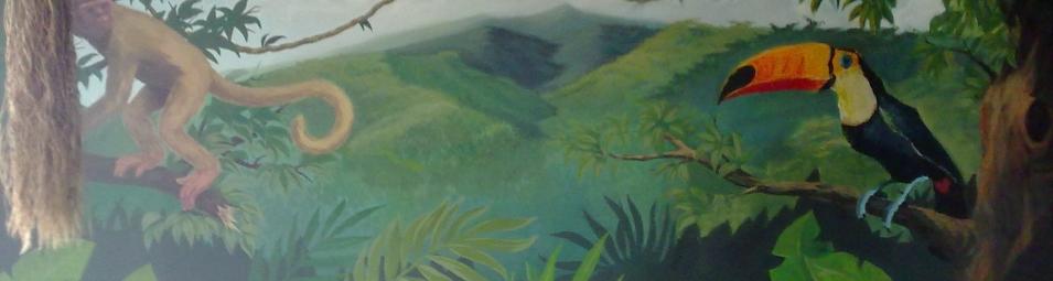 cover 4 the-jungle